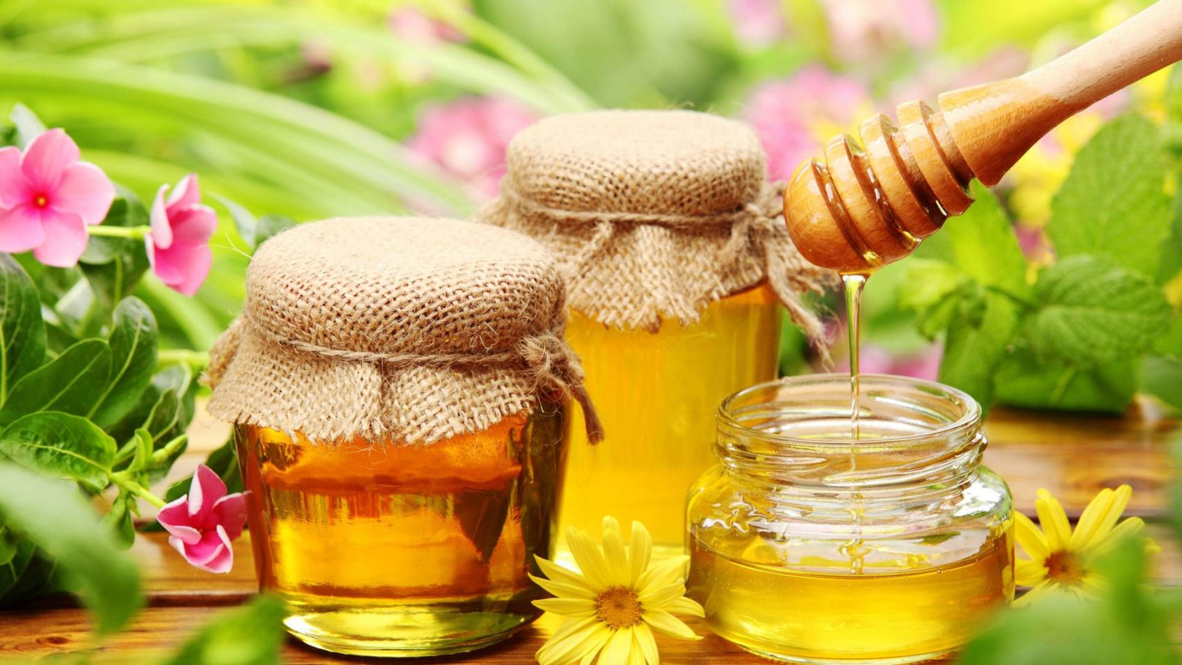 5 шаблонов для сайта по продаже мёда