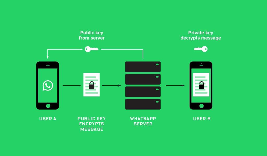 Принцип работы сквозного шифрования в мессенджере WhatsApp